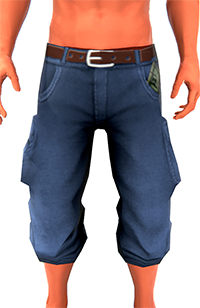 File:Baggycutoffs200.png